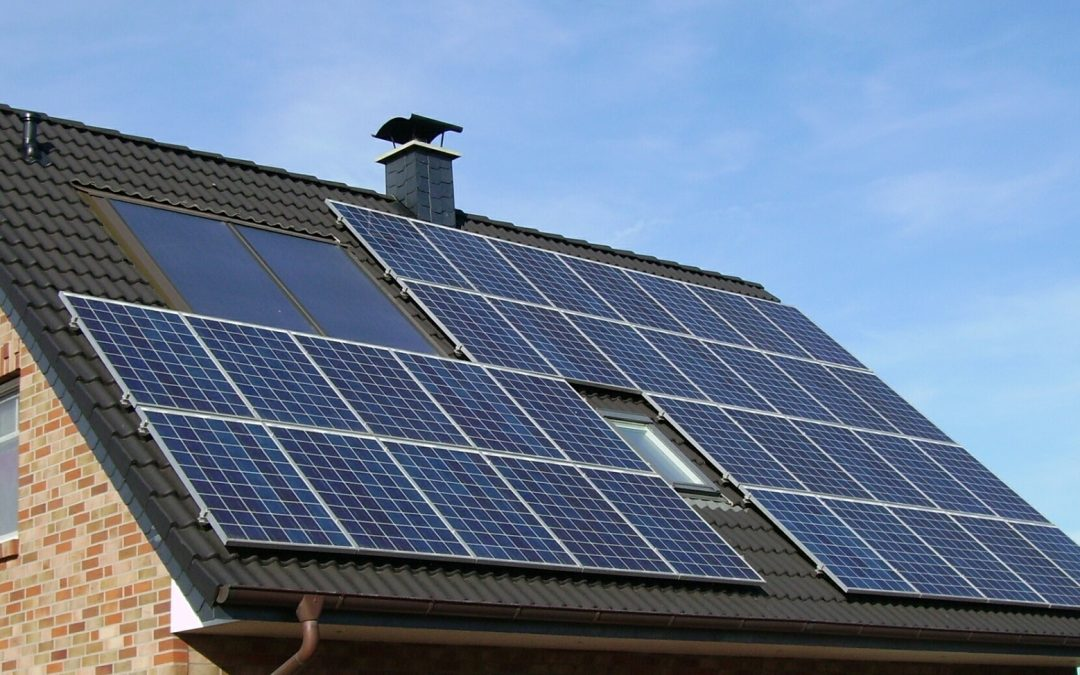 Top Tips for a Sustainable Home